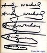 アンディ・ウォーホル Andy Warhol: Das Graphische Werk 1962-1980/のサムネール