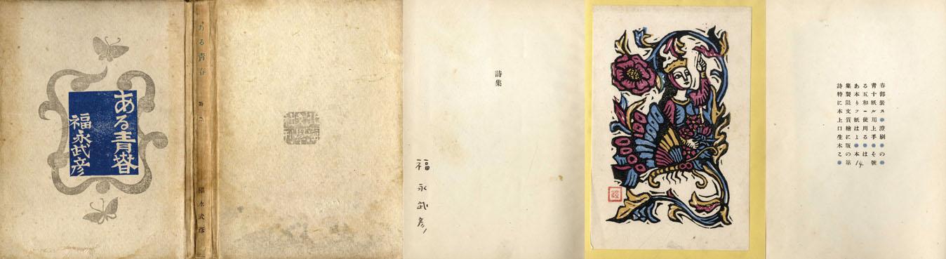 ある青春 特製・並製 2冊組/福永武彦