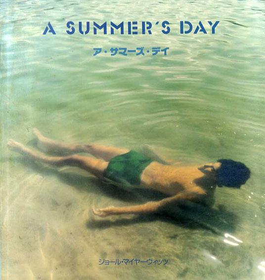 ジョール・マイヤーウィッツ写真集 Joel Meyerowitz: A Summer's Day/Joel Meyerowitz