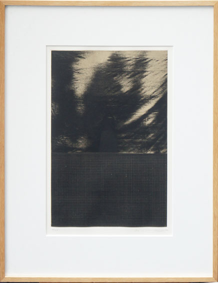 池田良二版画額「辺境の光への興味」/Ryouji Ikeda