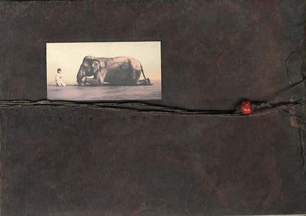 グレゴリー・コルベール Ashes and Snow: Tokyo Exhibition Catalog 2007/Gregory Colbert