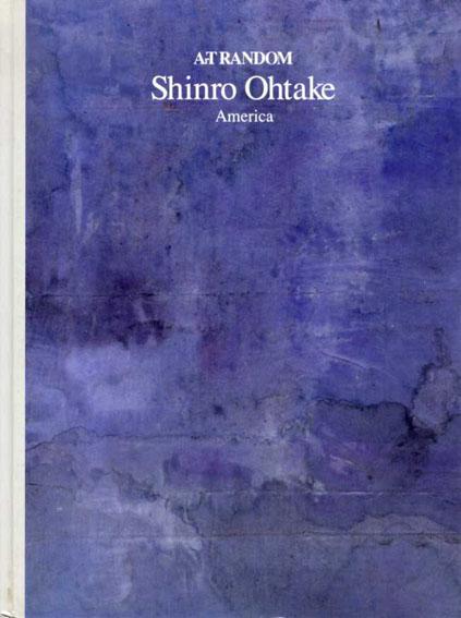 大竹伸朗 Shinro Ohtake: Art Random1/都築響一編