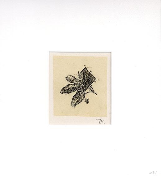 加納光於「展望 B-031」/Mitsuo Kano
