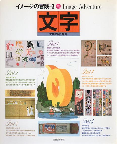 文字 文字の謎と魅力 イメージの冒険3/