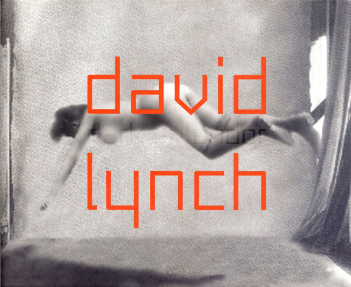 デヴィッド・リンチ David Lynch/Werner Spies編