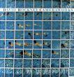 デイヴィッド・ホックニー David Hockney: Cameraworks/David Hockneyのサムネール