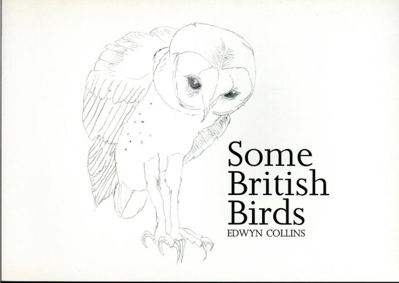 エドウィン・コリンズ Some British Birds/Edwyn Collins Aron Morel編