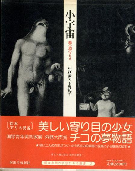小宇宙 鏡の淵のアリス/中江嘉男/野紀子 瀧口修造序文