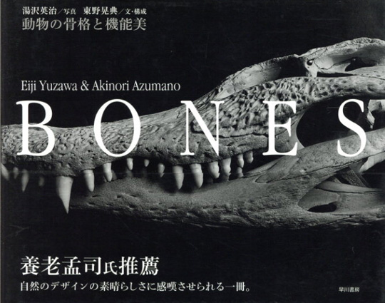 BONES 動物の骨格と機能美/湯沢英治写 東野晃典文・構成 遠藤秀紀監修