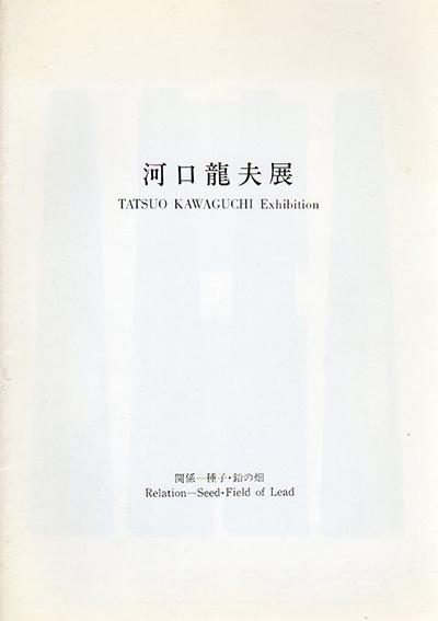 河口龍夫展 関係 種子・鉛の畑/