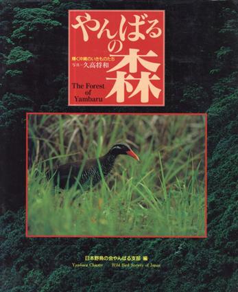 やんばるの森 輝く沖縄のいきものたち/久高将和 日本野鳥の会やんばる支部編集