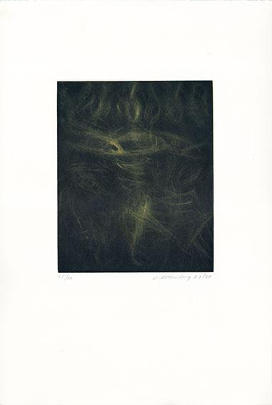 Yellow Spinner/スーザン・ローセンバーグ