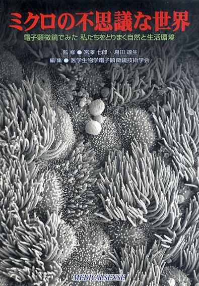 ミクロの不思議な世界 電子顕微鏡でみた私たちをとりまく自然と生活環境/宮沢七郎/ 島田達生