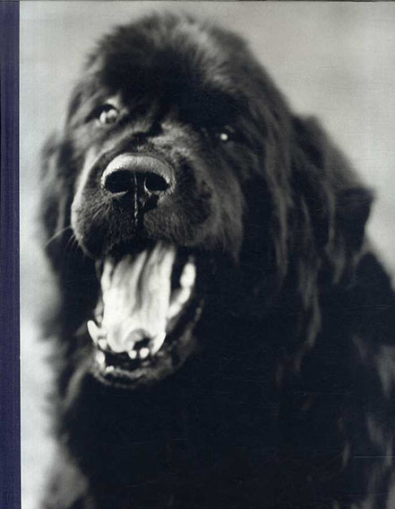 ブルース・ウェーバー写真集 Bruce Weber: Gentle Giants: A Book of Newfoundlands/Bruce Weber