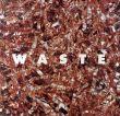 伊奈英次 Eiji Ina: Waste/Eiji Ina Toshiharu Ito序のサムネール