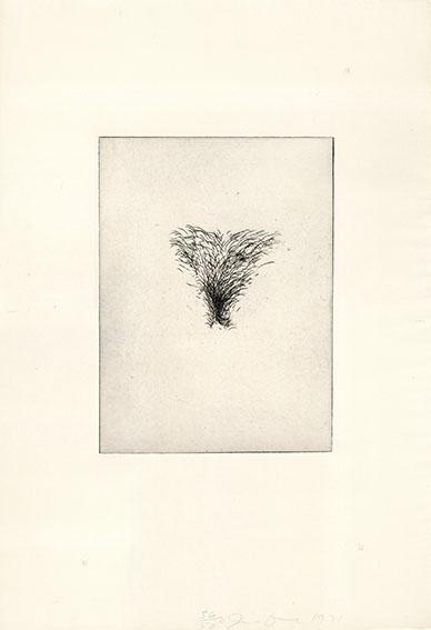 ジム・ダイン版画「Four Kinds of Pubic Hair」#4/Jim Dine