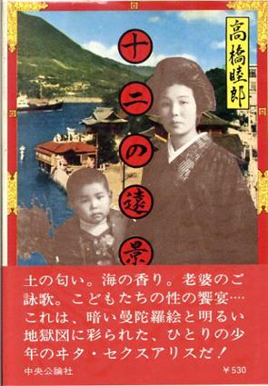 十二の遠景/高橋睦郎