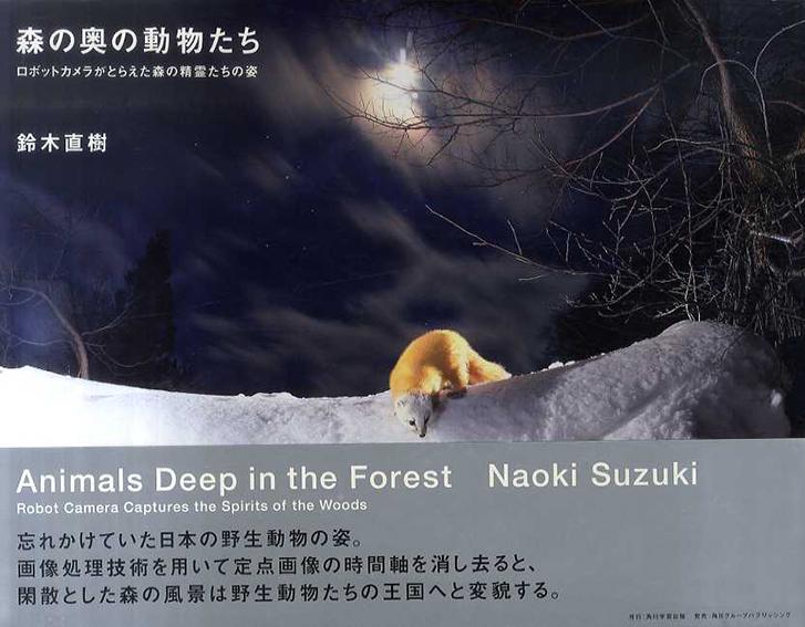 森の奥の動物たち  ロボットカメラがとらえた森の精霊たちの姿/鈴木直樹