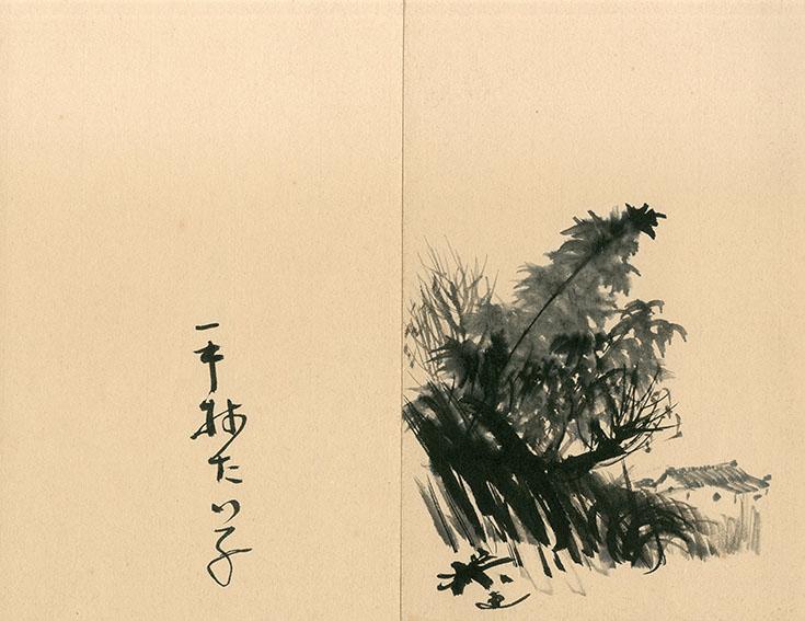 平林たい子 画/Taiko Hirabayasi