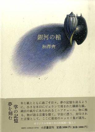 銀河の棺/柄澤斎