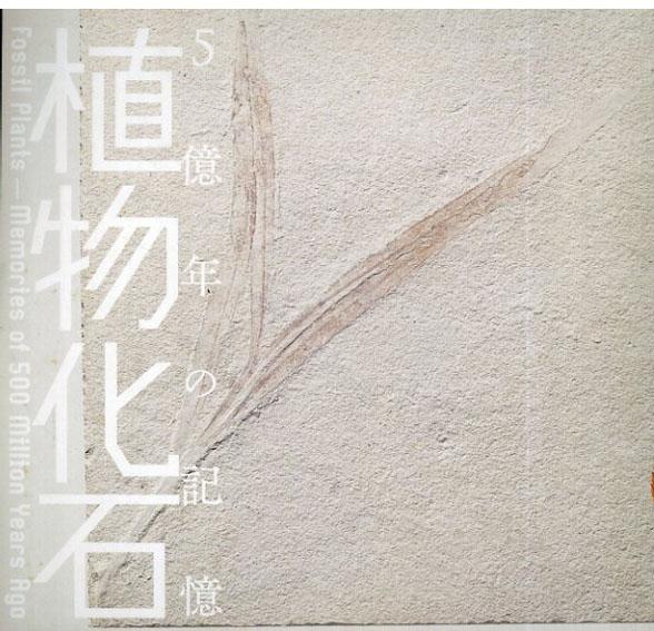 植物化石 5億年の記憶 Inax Booklet/西田治文