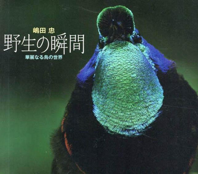 野生の瞬間 華麗なる鳥の世界/嶋田忠