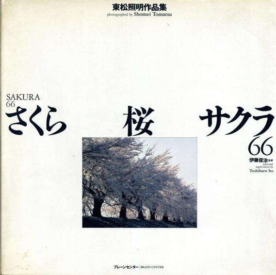さくら 桜 サクラ66/東松照明 ホームズ・ジュリアン訳