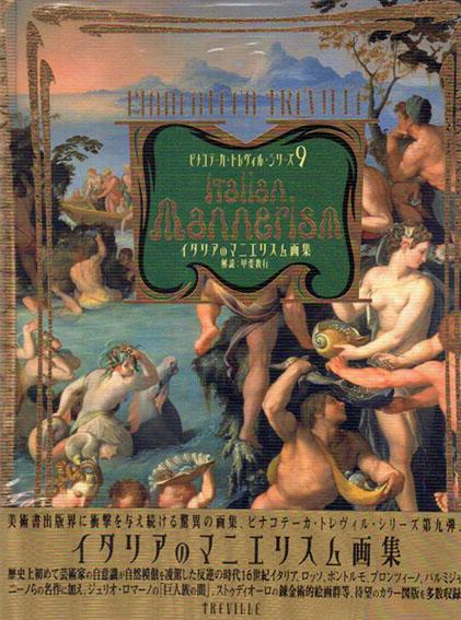 イタリアのマニエリスム画集 ピナコテーカ・トレヴィル・シリーズ9/甲斐教行