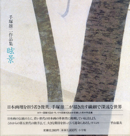 眩景 手塚雄二作品集/
