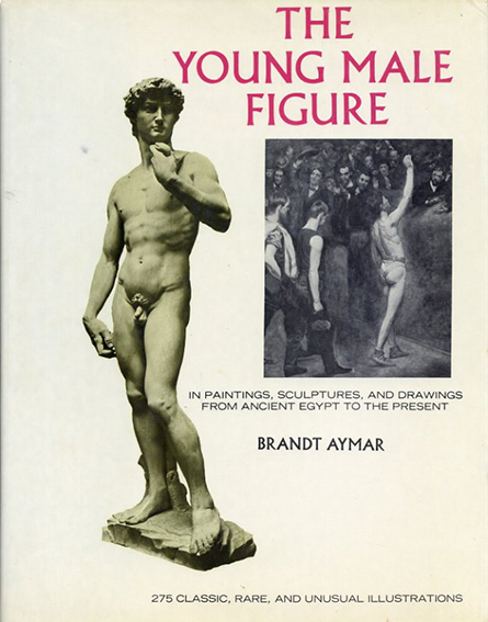 The Young Male Figure: in Paintings, Sculptures and Drawings from Ancient Egypt to the Present/