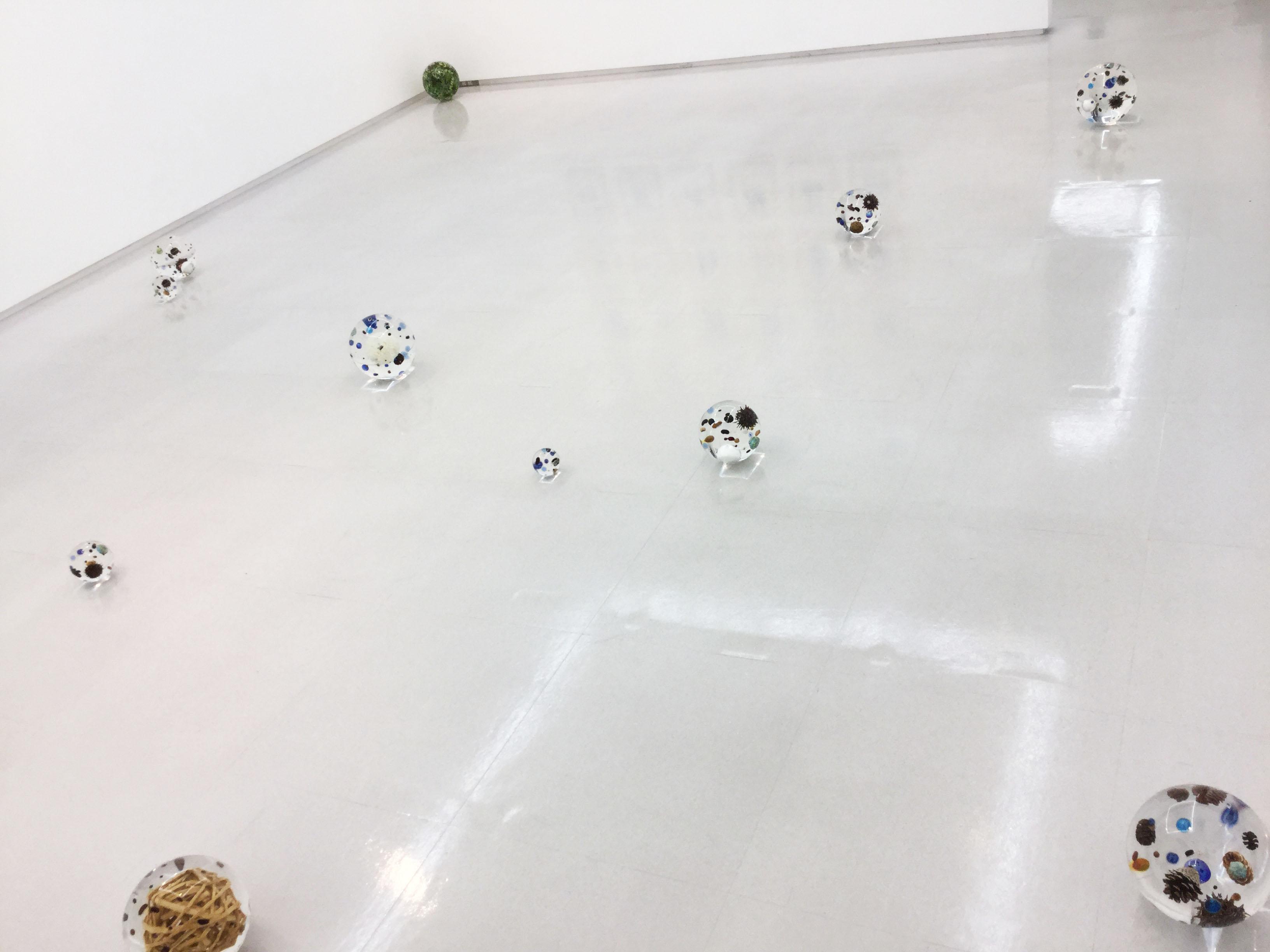 廣瀬智央展「森のコスモロジー」