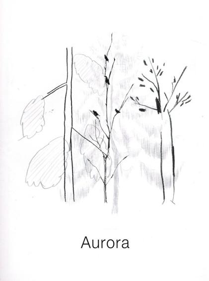 Aurora/Izumi Shiokawa/Noritake/Asami Hattori/HIMAA