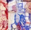 宮崎進展 湧現する内なる風景/西武アート・フォーラムのサムネール